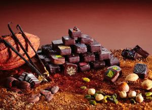 G'ASTRONOMIE - Pâtissier Chocolatier sur Lyon - Comparelend